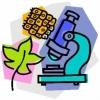Ideer til spændende biologitimer i erhvervsuddannelserne