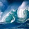 Giftigt havvand forsinkede evolutionen