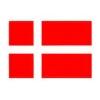 Nationale test i dansk som andetsprog er i gang