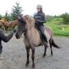 Oplev Island på hesteryg, i kajak eller til fods.