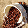 Sådan påvirker kaffe din indlæringsevne og dit helbred