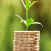 Lær at handle med aktier; det skal du være opmærksom på som begynder