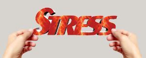 Sådan forebygger og helbreder du stress med tankefeltterapi og stresscoaching.