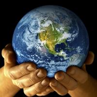 Studerende vælger at blive i udlandet
