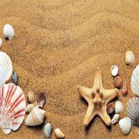 Sådan sparer du penge på din ferie med en valutaomregner