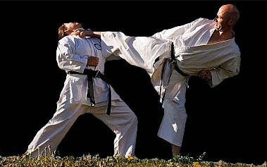 Karate Shuri-ryu København