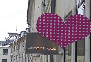 street cut frederiksberg