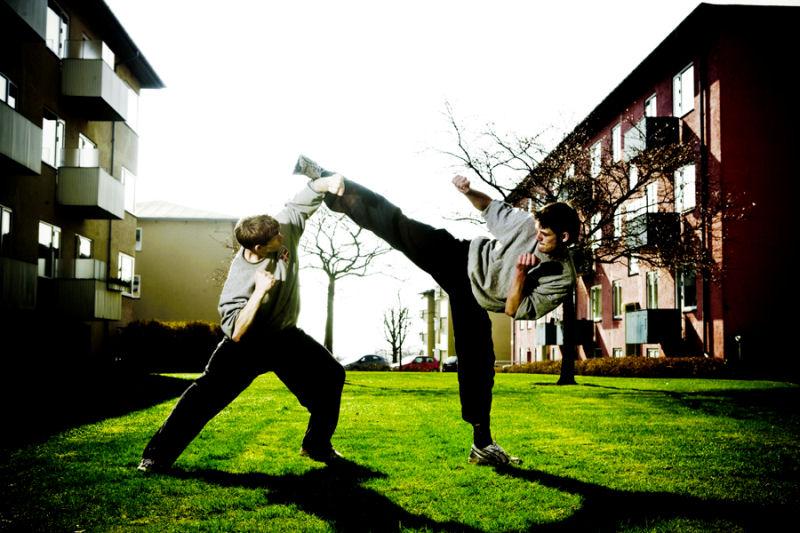 Dai Ki Haku Martial Art