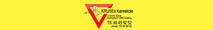 Kruse's Driving School